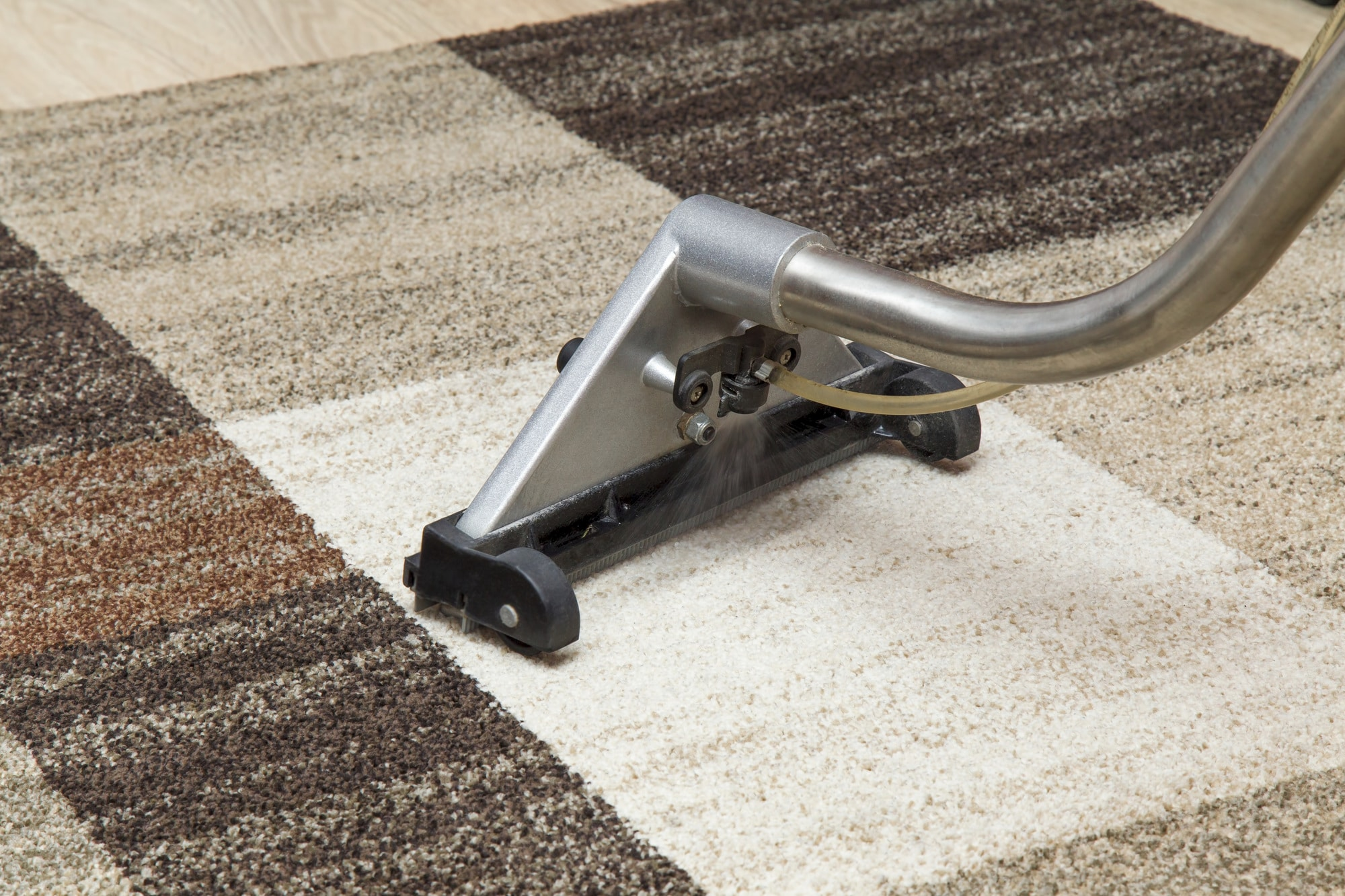 Avixia Service Carpet Header